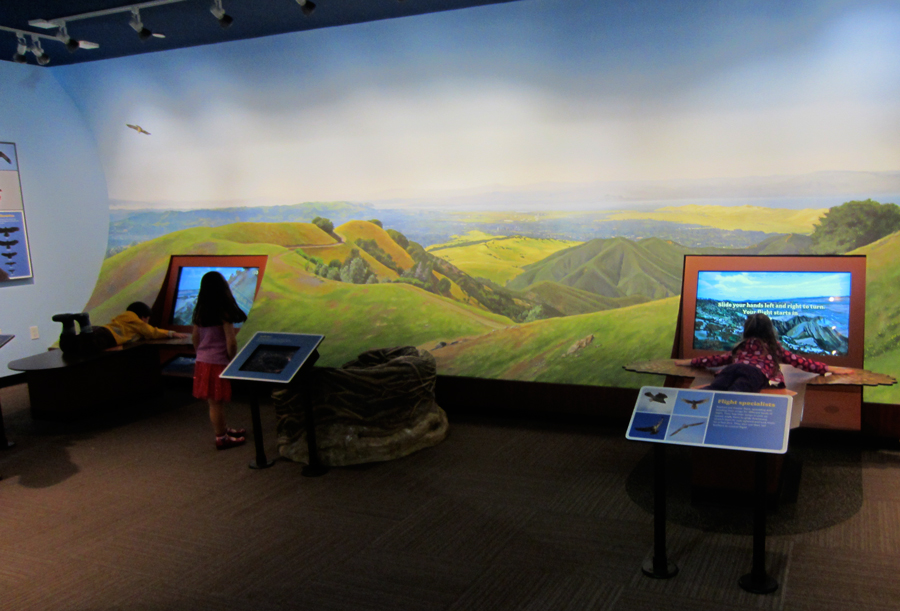 Mount Diablo mural as installed