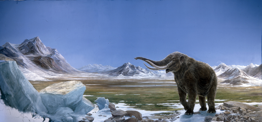 Mastodon Mural ~18' X 25'