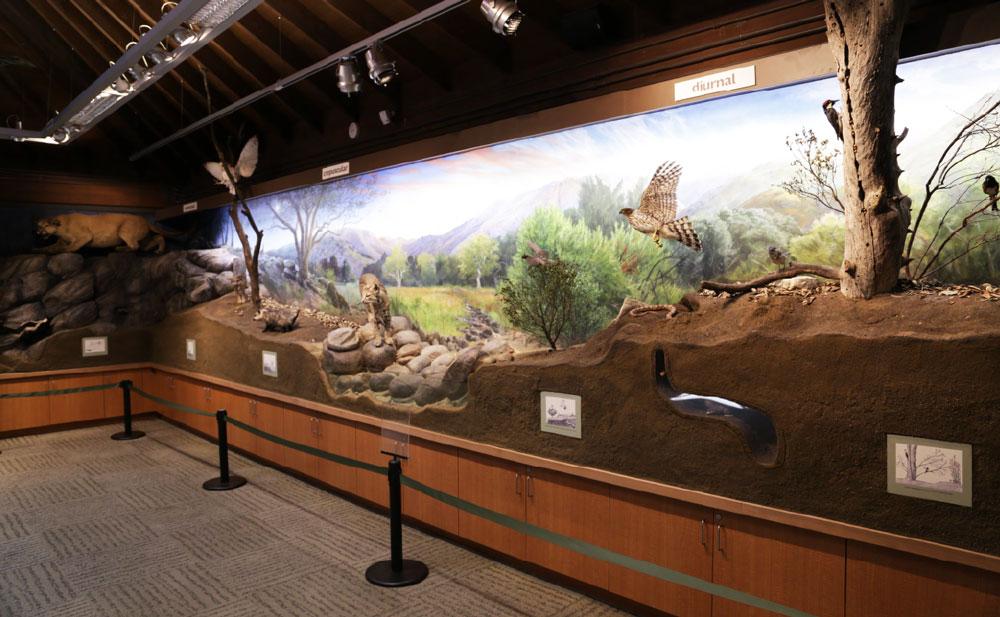 Placerita-Canyon-Nature-Center-2