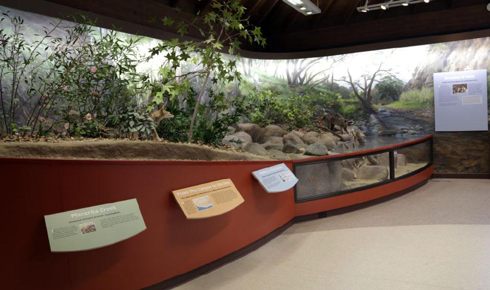 Placerita-Canyon-Nature-Center-4