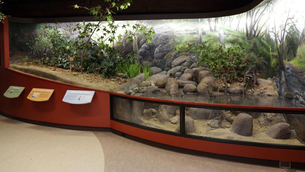 Placerita-Canyon-Nature-Center-5