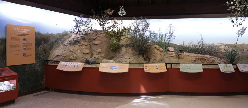 Placerita-Canyon-Nature-Center-6
