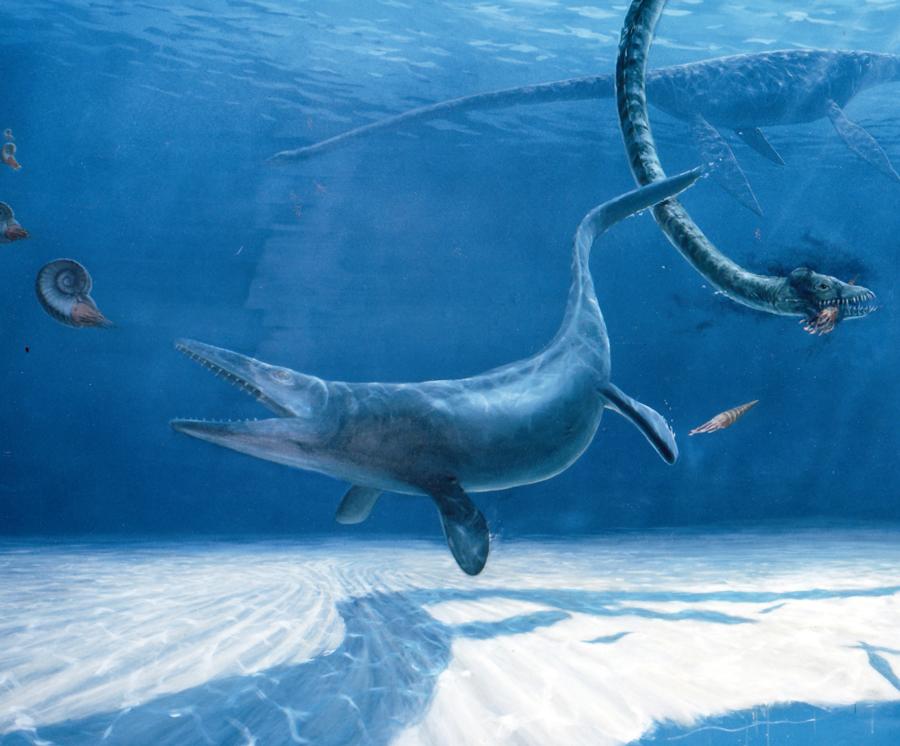 Prehistoric seas, detail