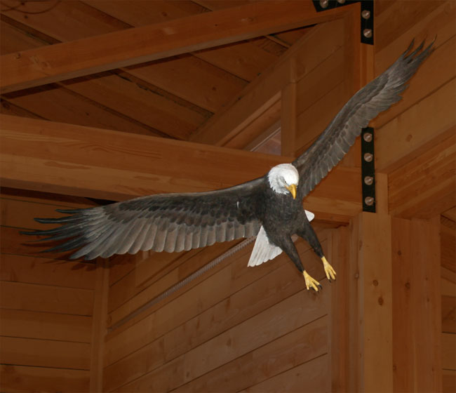 A full scale model of a Bald Eagle
