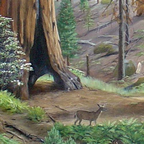 Details of the Sequoia Forest mural.