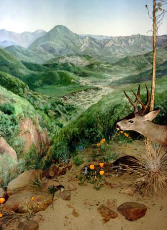 Mural at Ojai